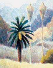 new_mountain_-_grass-_crop_with_palm_copy