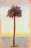 sea_palm_for_silver_frame_5x7_copy